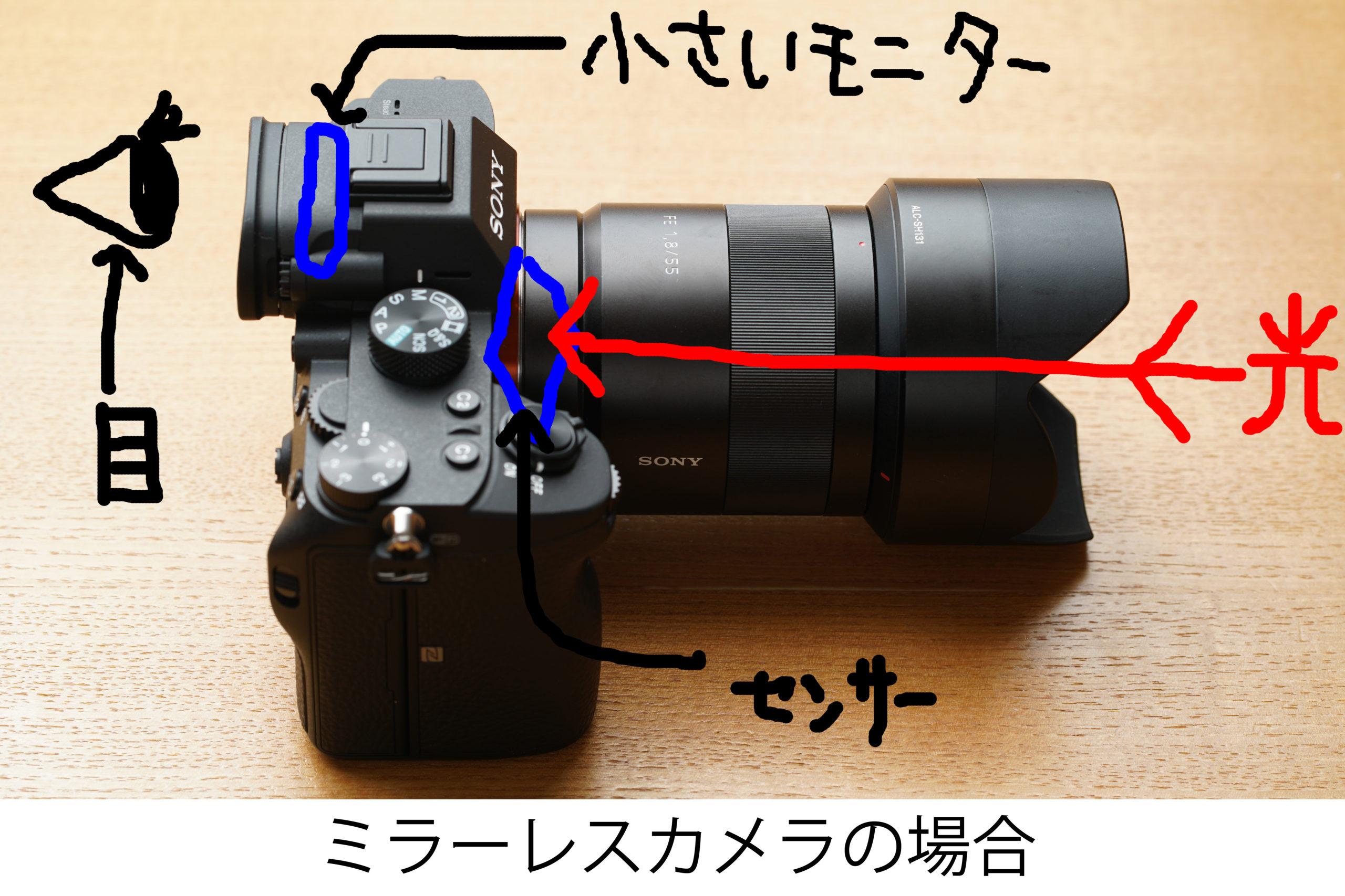 福岡の出張撮影サービス「RYO PHOTO(リョウフォト)」の出張カメラマン山口が福岡で出張撮影したカメラの写真