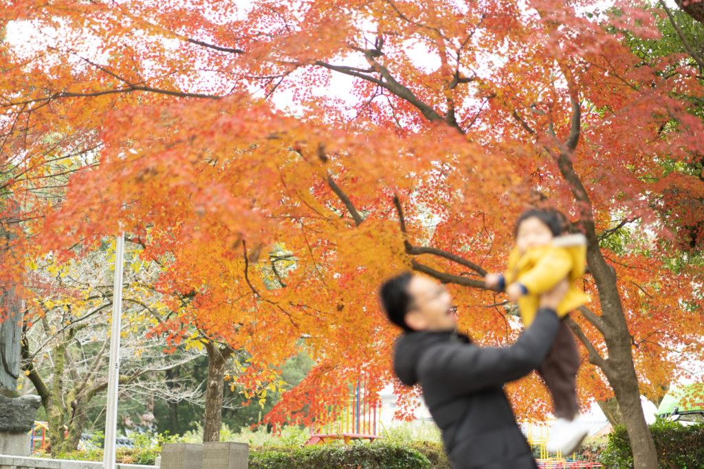 紅葉背景の親子の写真