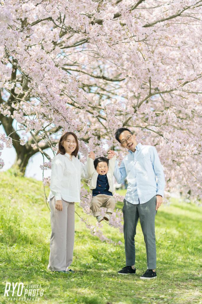 満開の桜背景での家族写真